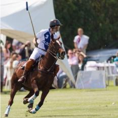 The London Polo Day